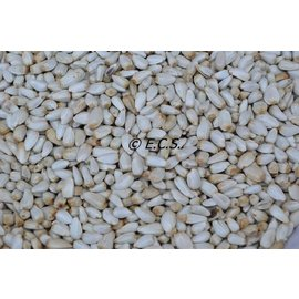 ECS Cardy / Saffloorpitten 1 kilo