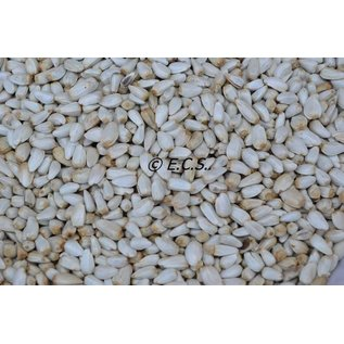 ECS 1 kg Kardi / saphlore Gruben