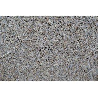 ECS 1 kg Gras Fein