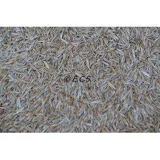 ECS 1kg Coarse Grass