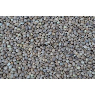 ECS 1kg Hemp Seed Fine