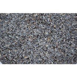 ECS 1kg Niger seed germination quality