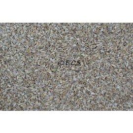 ECS 1kg Parsley Seed