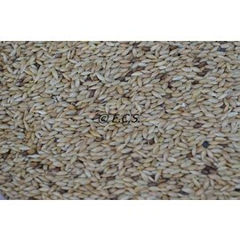 ECS 1kg Canary seed
