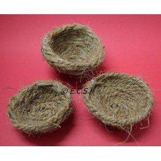 Cocos nest