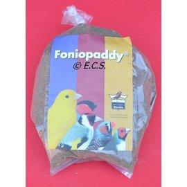 Floralia Foniopaddy
