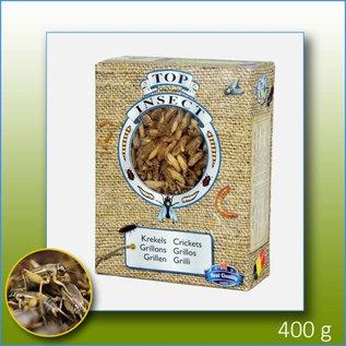 Top Insect Grillen (gefroren)