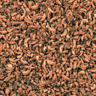 CéDé Insekten mit Honig und Beeren Zeitlich bis 10-2018
