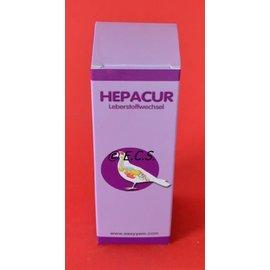 Easyyem Hepacur