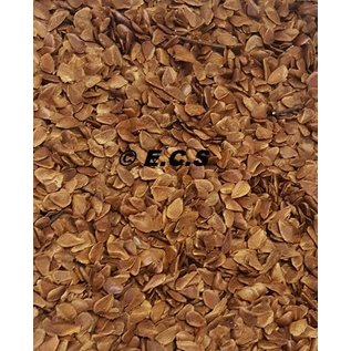 ECS Red Cedar Boomzaden (Dennenzaad)