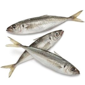 Hors Makreel groot Per 3 stuks (Diepvries) +/- 190gram