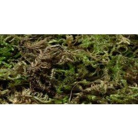 Moss +/- 500gram
