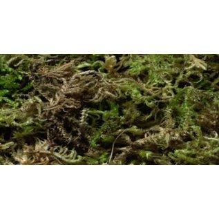 Moss +/- 250gram 6 liter