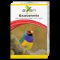 Avian Exotenmix