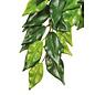 Kunstplant ficus M