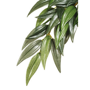 Kunstplant ruscus L