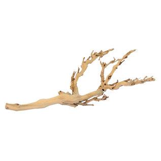forest branch M/45CM