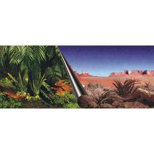 Poster achterwand jungle & dessert