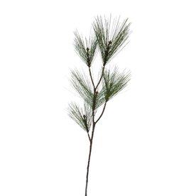 Pure Needle Pine