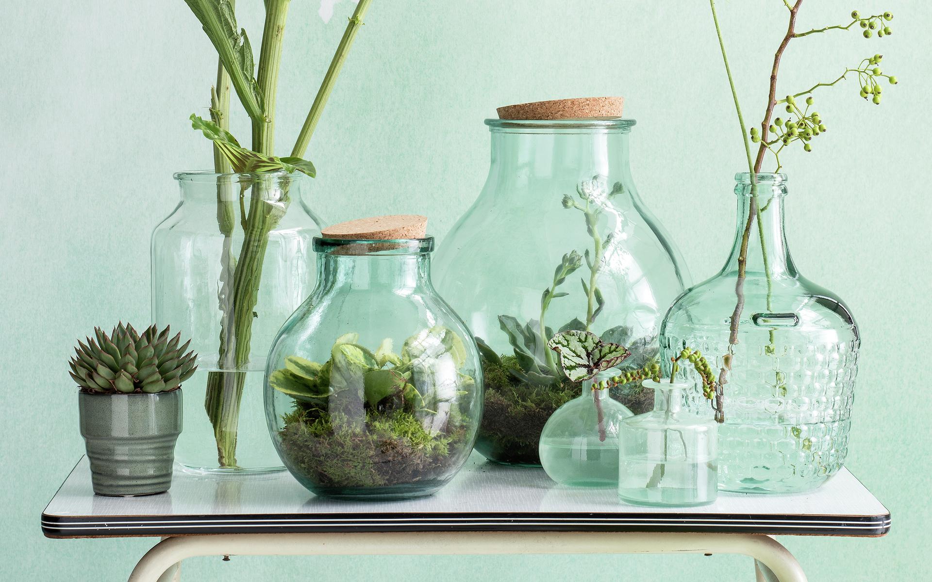 5 Mooie Vazen : Glazen vazen & flessen stijl28