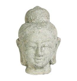 PTMD PTMD Hayar Buddha S