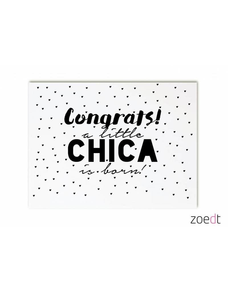 Zoedt Zoedt Kaart Congrats a little chica is Born
