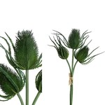 PTMD PTMD Thistle Plant Green 27x24x46cm
