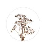 Zoedt Zoedt | Muurcirkel droogbloemen 30cm