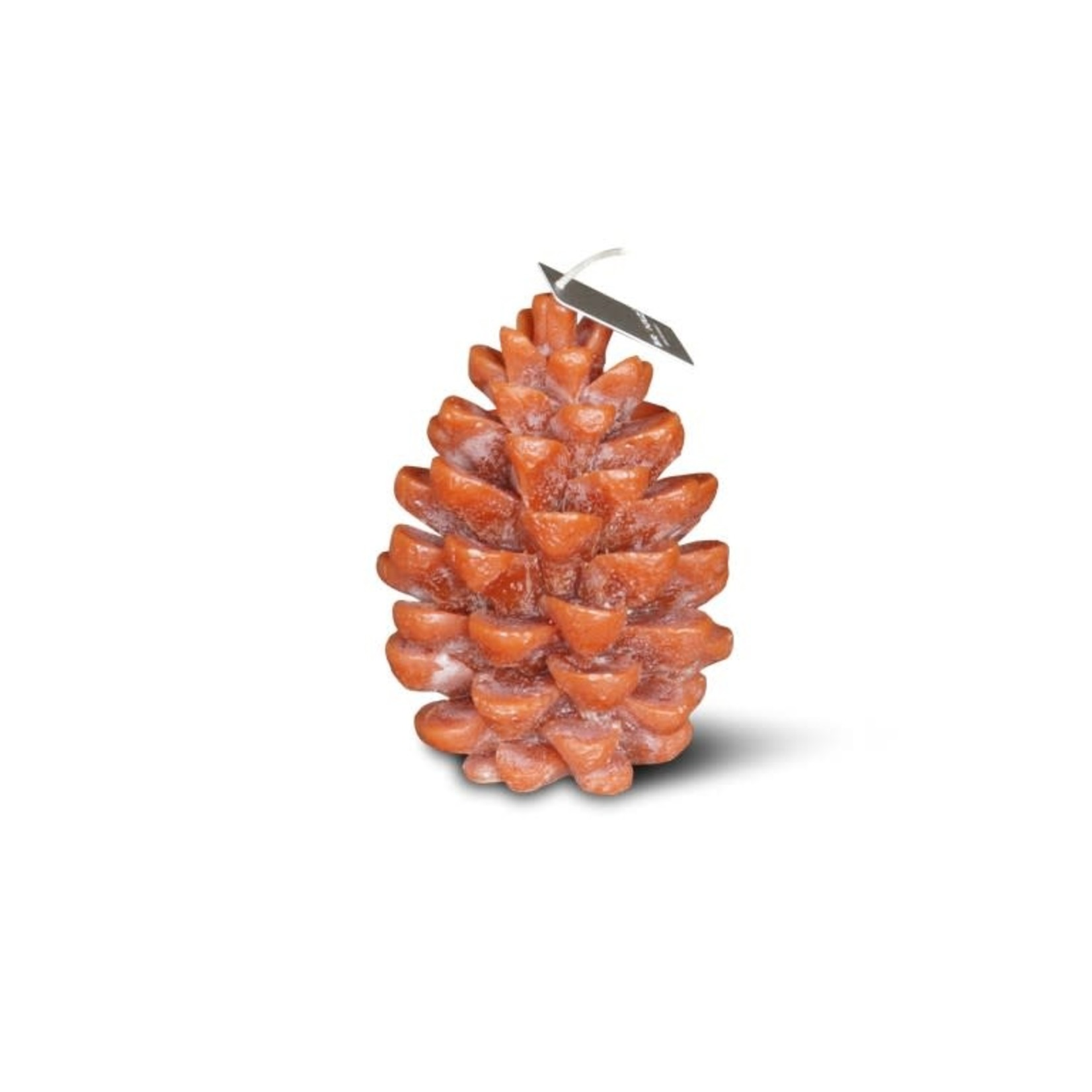Brynxz Brynxz candle pine cone cognac L 11x16cm