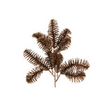 PTMD PTMD | Leaves Plant brown pine