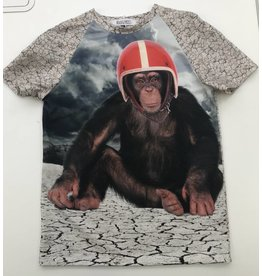 Kels Shirt Panel Monkey