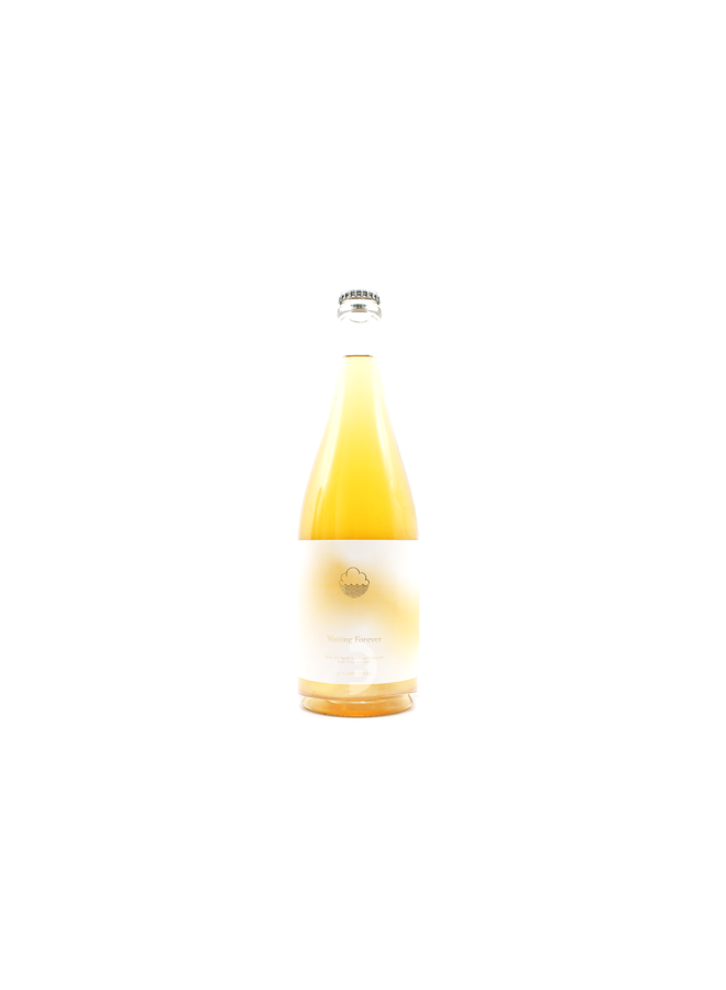 Cloudwater - Waiting Forever