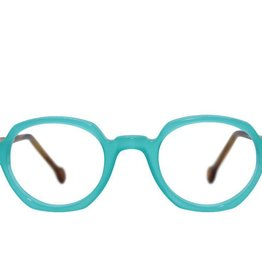 Frame Holland 780 TURQUOISE/BROWN
