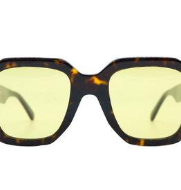 Celine 45I TORTOISE PHOTOCHROMIC