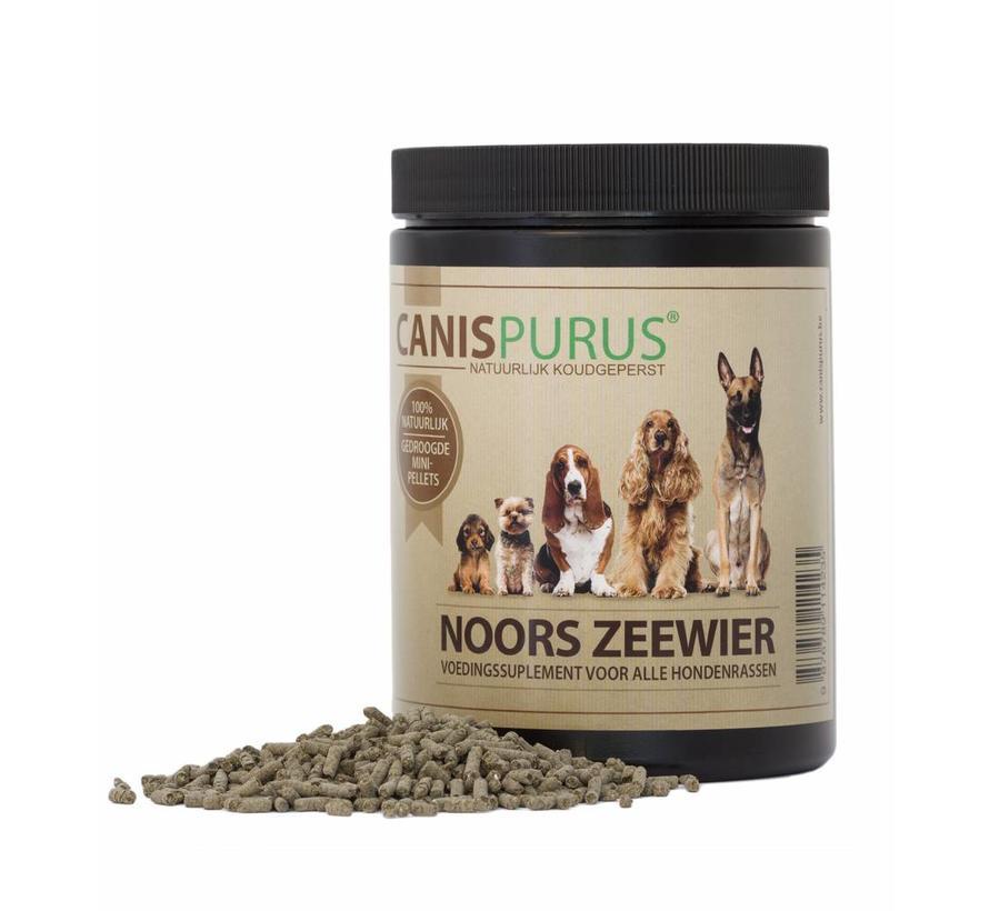 Canis Purus Noors Zeewier 400 gram