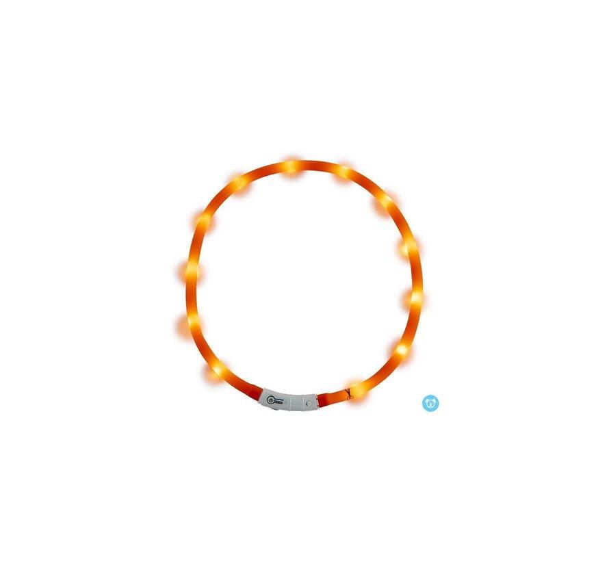 JV LED Halsband Oranje