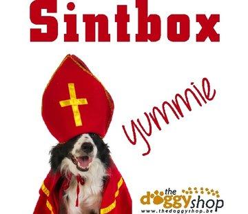 Sintbox Hond