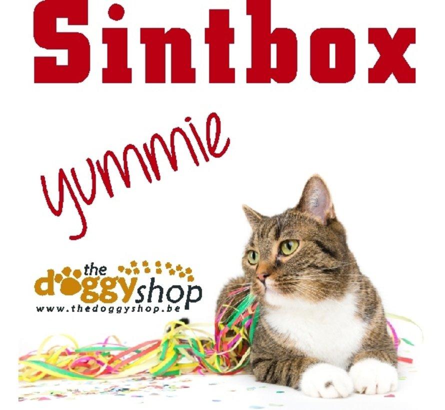 Sintbox Kat