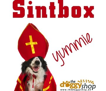 Sintbox Hypoallergeen Hond