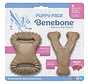 Benebone Puppy 2-pack Bacon
