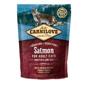 Carnilove in to the wild Carnilove Cat Zalm 2 kg