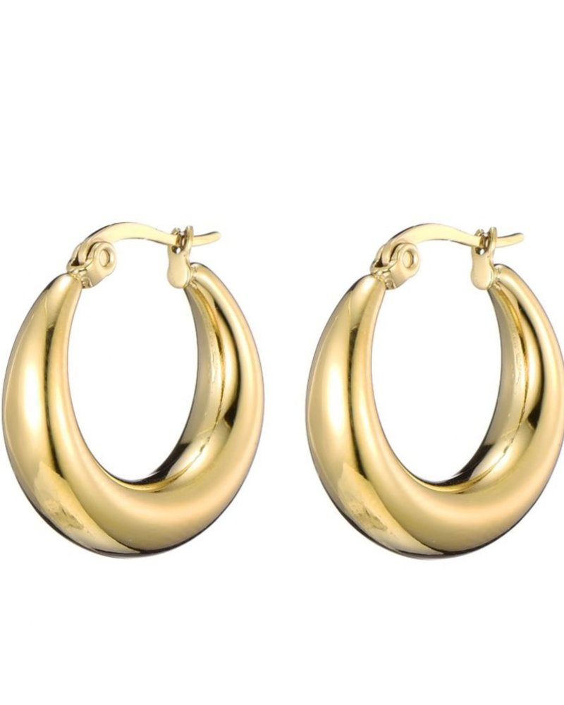 Oorbellen - Small Thick Hoops