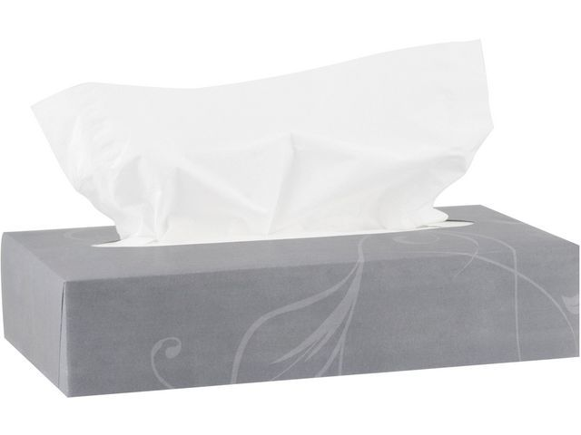 KATRIN Facial tissue Katrin 2l wit/ds100