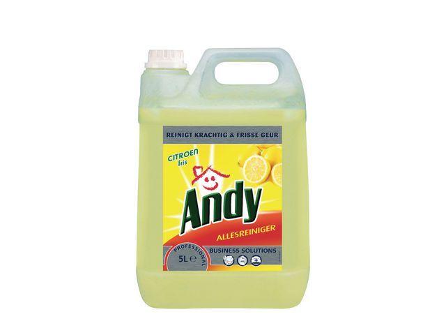 Andy Andy Allesreiniger grootverpakking Citroen Fris (fles 5 liter)