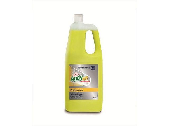 Andy Allesreiniger Andy Prof citroen 2L