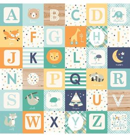 Echo Park Hello Baby Boy Cardstock 12x12  Alphabet Blocks