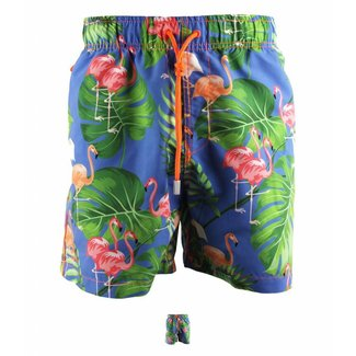 Ramatuelle Antilles Swim Shorts