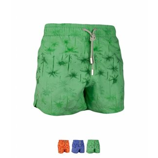 Ramatuelle Palm Beach Swim shorts | Boys