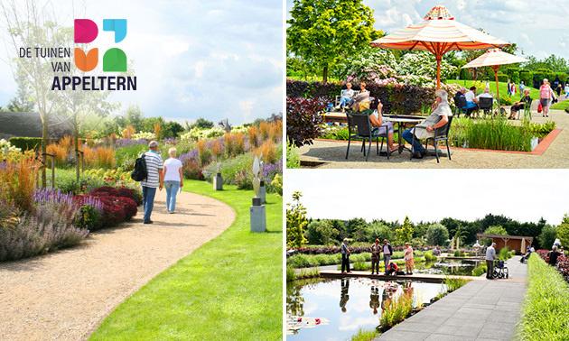 de-tuinen-van-appeltern-garden-interoirs-shop-in-shop