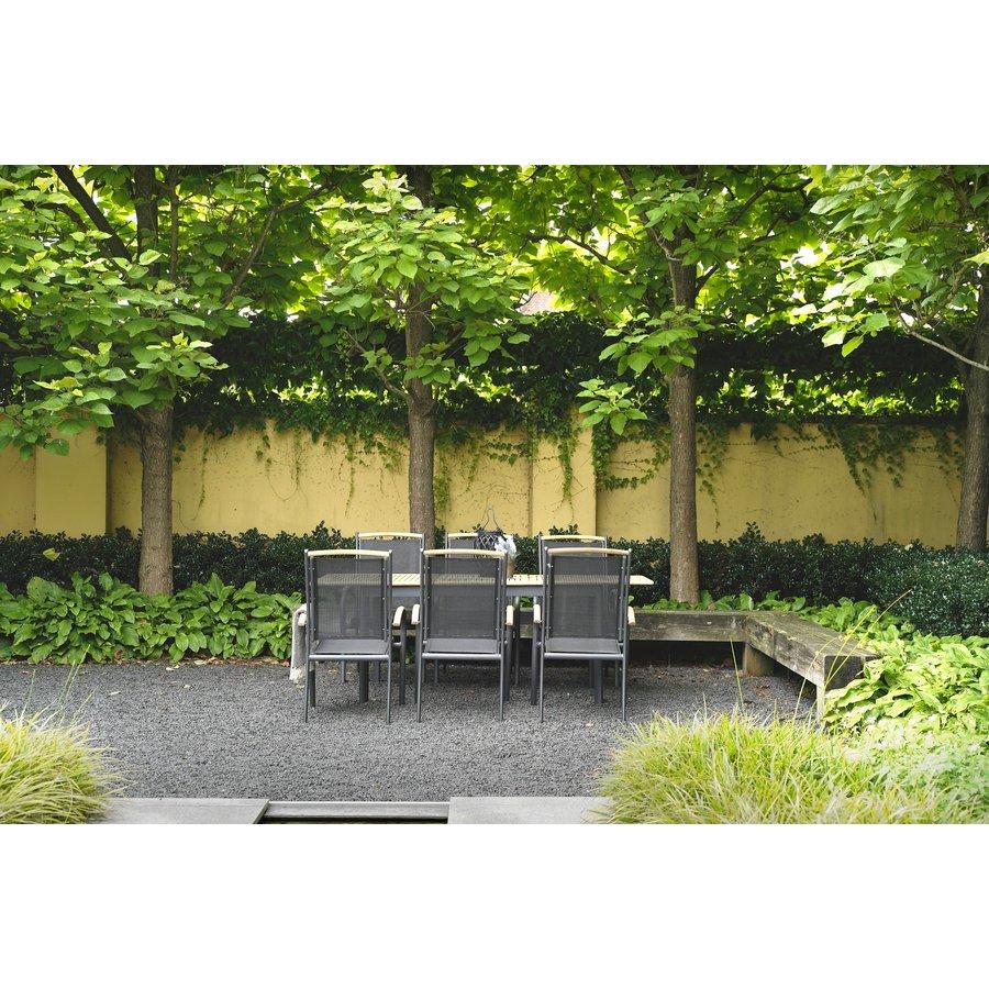 Tuinstoel Stapelbaar - Monza - Teak - Lesli Living-3